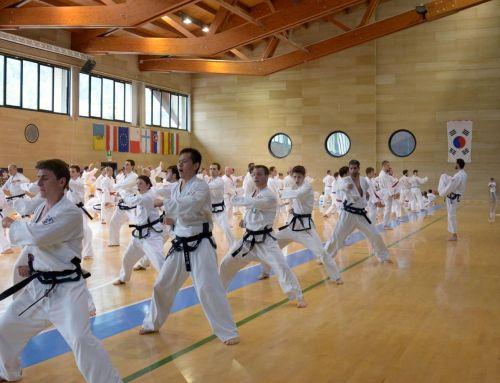 Ergebnisse der Deutschen Meisterschaft im Traditionellen Taekwon-Do