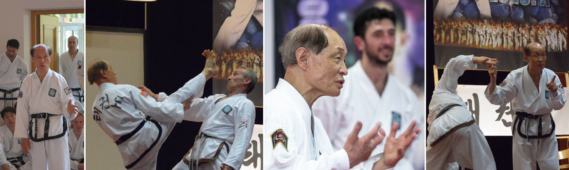 grossmeister-kwon-jae-hwa-taekwon-do