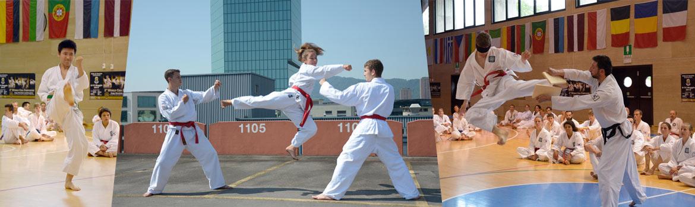 taekwondo-fuer-jugendliche-freiburg-zuerich