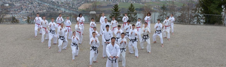 taekwondo-freiburg-zuerich-infos